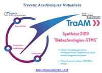 Synthèse des TraAM 2018-2019