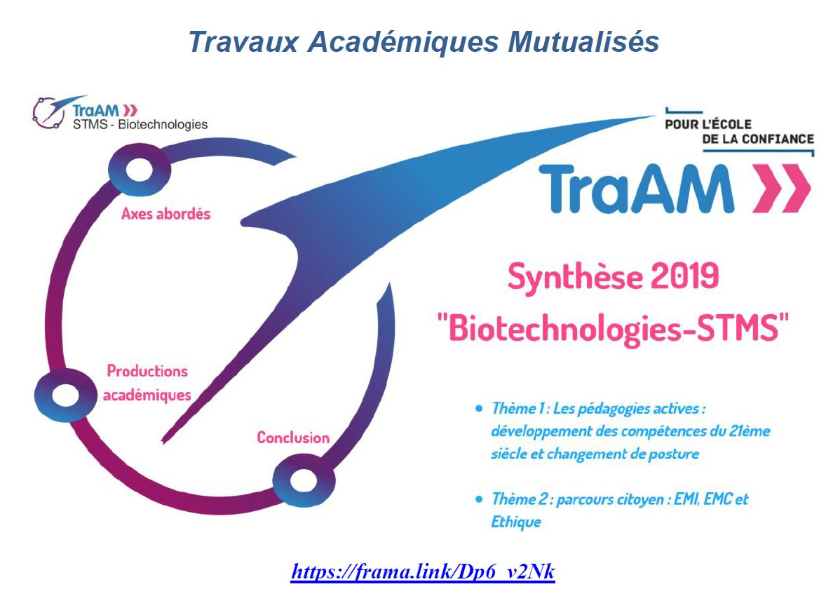 synthese-traam-genialy-18-19