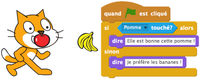 illustration du langage Scratch