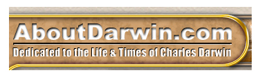 about darwin