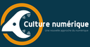 Modules de culture numérique